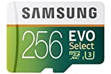 Image of Samsung 256GB 95MB/s MicroSDXC EVO Select Memory Card with Adapter (MB-ME256DA/AM)