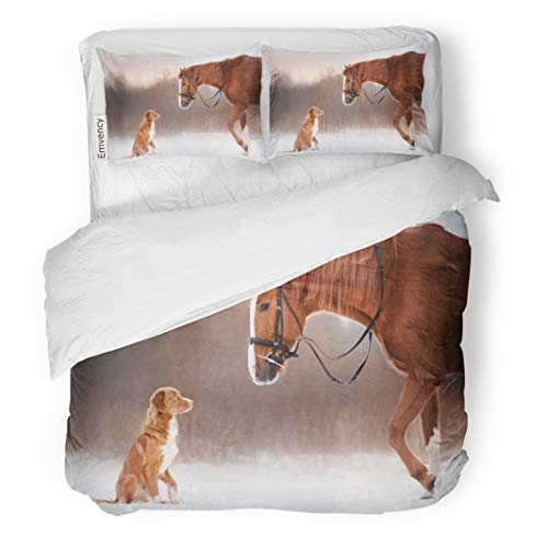 Semtomn Decor Duvet Cover Set Twin Size Red Horse and Dog Walking in The Field Winter Nova Scotia Duck Tolling Retriever 3 Piece Brushed Microfiber Fabric Print Bedding Set ()