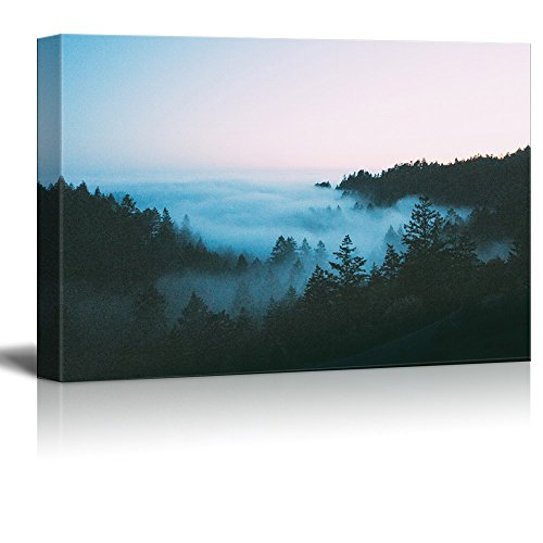 Forest in the Fog Gallery