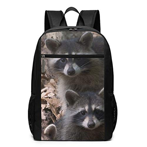 - PhyShen Raccoon Animal Spring Unisex Custom Shoulder Bags,Adult Student Double Zipper Closure Casual School Bag