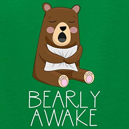 Dressdown Bearly Awake 1-13 Years Kids Hoodie 9 Colours