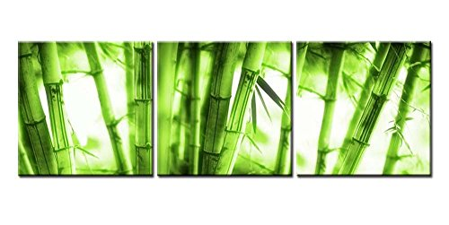 Canvas Print Wall Art Painting For Home Decor Beautiful Soft Green Bamboo  Forest 3 Pieces Panel