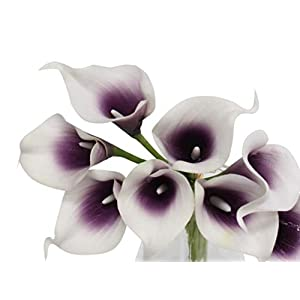 Angel Isabella 10pc Set Real Touch Calla Lily-Keepsake Artificial Flower Perfect for Cut to Make Boutonniere Corsage Bouquets (Picasso Plum)