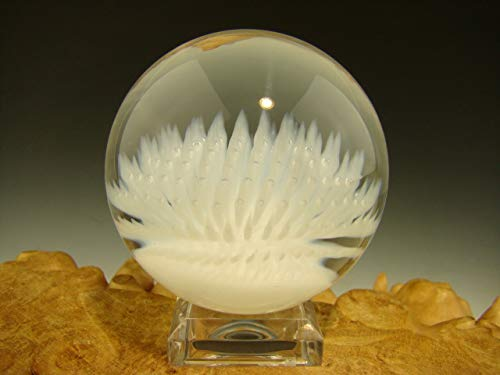 Vortex Glassworks Anemone Glass Art Marble White Nautical Implosion Ocean Orb by Aaron Slater VGW (Ready to Ship)