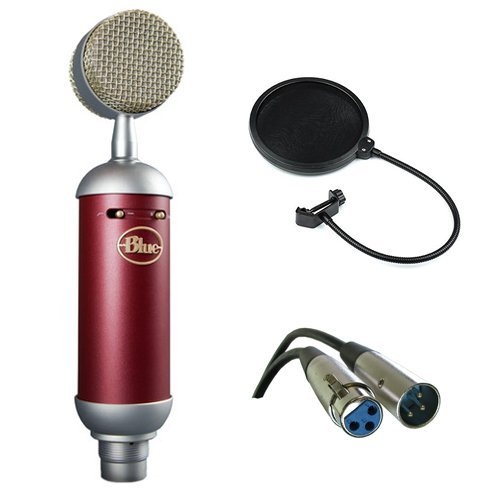 Blue Spark SL Large-Diaphragm Studio Condenser Microphone with XLR Cable and Pop Filter