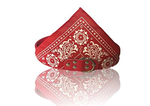 A Dog's Life Fashionable Bandana Collar (Large, Red)