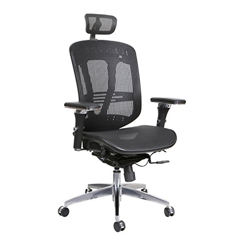 Thornton's Office Supplies ErgoExec High Back Mesh Executive Swivel Office Chair, Black (Eurotech Office Chairs)