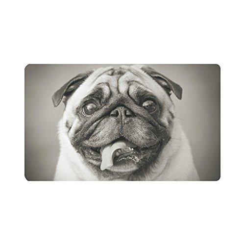 InterestPrint Funny Pug Puppy Dog Animals Doormat Anti-Slip Entrance Mat Floor Rug Indoor/Outdoor Door Mats Home Decor, Rubber Backing Large 30''(L) x 18''(W) by InterestPrint