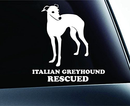 Italian Greyhound Rescued Dog Symbol Decal Paw Print Dog Puppy Pet Family Breed Love Car Truck Sticker Window (White), Decal Sticker Vinyl Car Home Truck Window Laptop ()