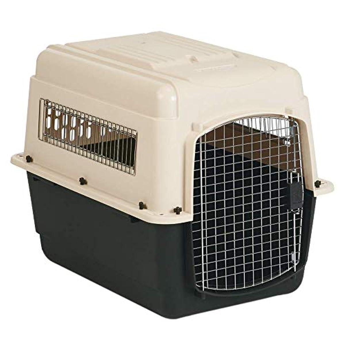 [해외] 애완동물 라이브러리 컬러 바리 켄 네루우루호랑이 ML
