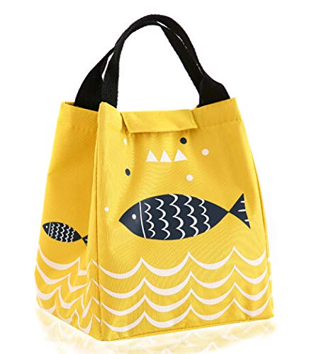 HX_HQ Lunch Bag Reusable Lunch Box Tote Bag Insulated Lunch bags Women Men Kids Lunch Bag Work school Picnic BBQ
