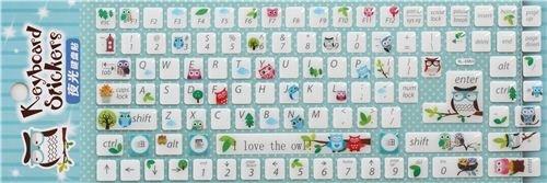 Pegatinas teclado computadora kawaii bosque búho de Japón: Amazon.es: Electrónica