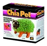 Chia Pet Handmade Decorative Planter, Kitten, 1 Each