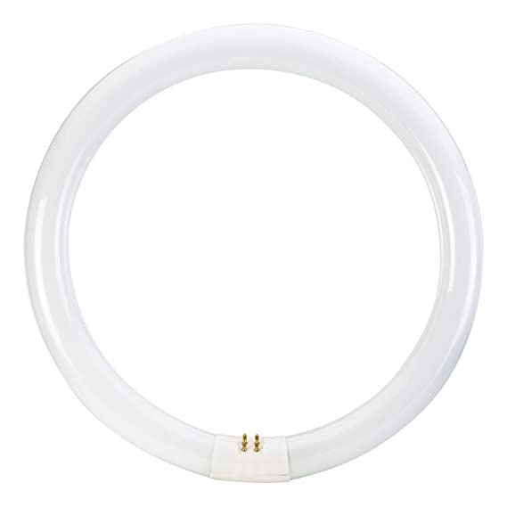 Philips 391177 Circline Fluorescent 32 Watt 12 Inch T9 Cool White