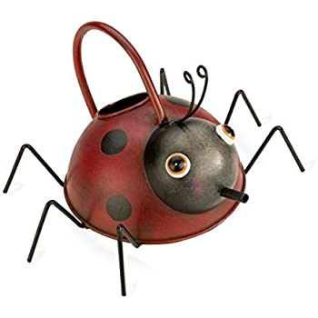 D art collection iron watering can snail garden outdoor - Ladybug watering can ...