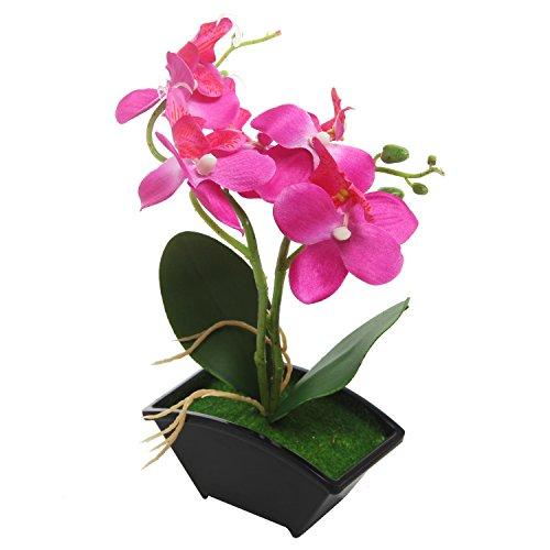 Miniature Artificial Orchid Phalaenopsis Arrangement