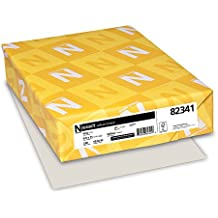 Wausau Paper Vellum Bristol Cover Stock, 250-Sheets, Gray, 8.5 x 11-Inch (82341)