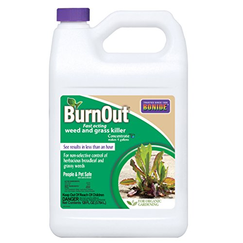 Natural Weed Control (Bonide Burn Out Weed and Grass Concentrate Killer, 1 gallon)