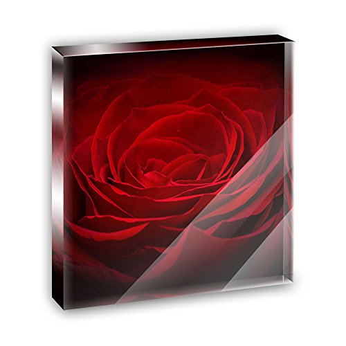 Red Rose Closeup Flower Petals Acrylic Office Mini Desk Plaque Ornament Paperweight