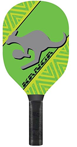 Amazon.com: Kanga Pickleball neta neta, Paddle y juego de ...