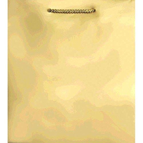 Amscan Party Friendly Plain Medium Gift Bag, 9 1/2