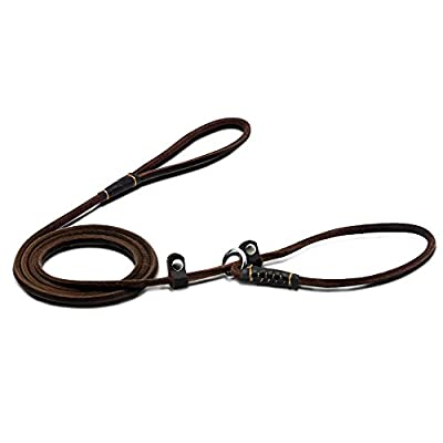 Wellbro Luxury Real Leather Slip Dog Leash, Deluxe Slip Lead with Adjustable Collar, Soft and Exquisite, Suit for Small and Medium Puppies, 160cm Long by 0.6cm Wide, Brown by Wellbro