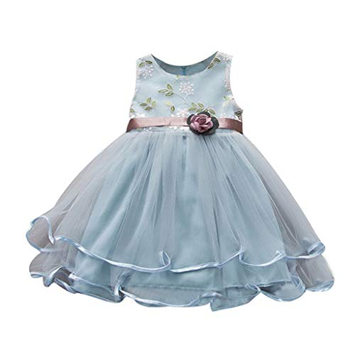 Baby Girls Tulle Tutu Dress, Party Pageant Dance Princess Gown Dress Floral Print Sleeveless Cotton Birthday Dresses (Light Blue, 6-12 Months)
