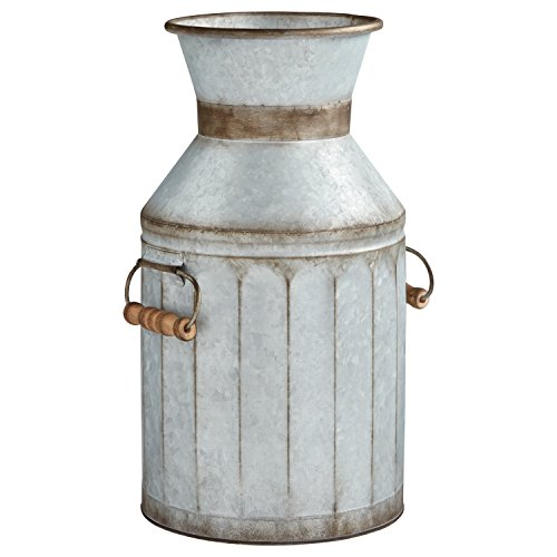 Outdoor Vase (Stone & Beam Vintage Galvanized Metal Milk Jug Planter, 16.25
