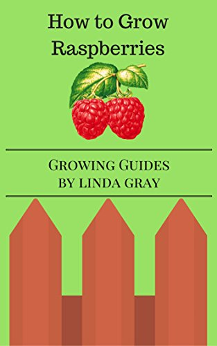 How To Grow Raspberries (Growing Guides)
