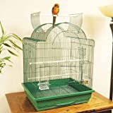 Petco Designer Green Dome Playtop Parrot Cage, My Pet Supplies