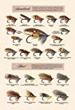 Paper poster printed on 20 x 30 stock. Fly-Fishing Lures: Standard and Hair
