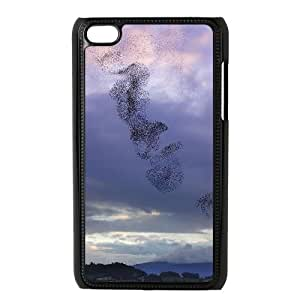 Birds Migration New Fashion Case for Ipod Touch 4, Popular Birds Migration Case