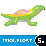 BigMouth Inc. Stranger Things Dart Pool Float, Huge 5'11 Pool Toy with Stranger Things Theme, Easy to Inflate/Deflate and Clean, Makes a Great Gift Idea