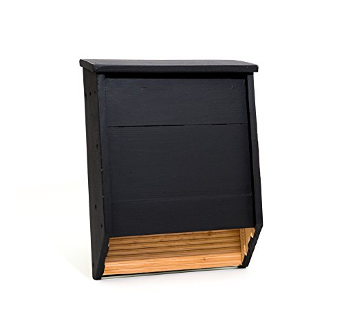 Big Bat Box 2-Chamber Cedar Bat House (black)
