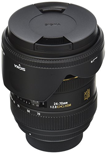 Sigma 24-70mm f/2.8 IF EX DG HSM AF Standard Zoom Lens for Nikon Digital SLR - 24 Paint Special Scale
