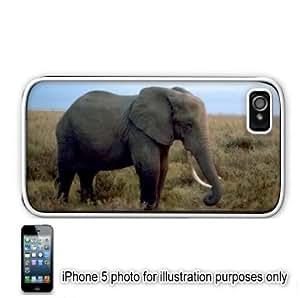 African Elephant Photo #2 Apple iPhone 5 Hard Back Case Cover Skin White
