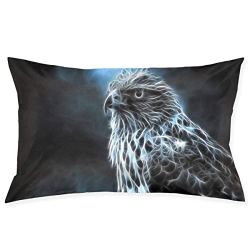Mintslove Funny Pillow Case, Space Lightning Eagle Art Pillowcase, Rectangle Zippered Pillow Cases - Pillow Protector Cover Case - Standard Size 20