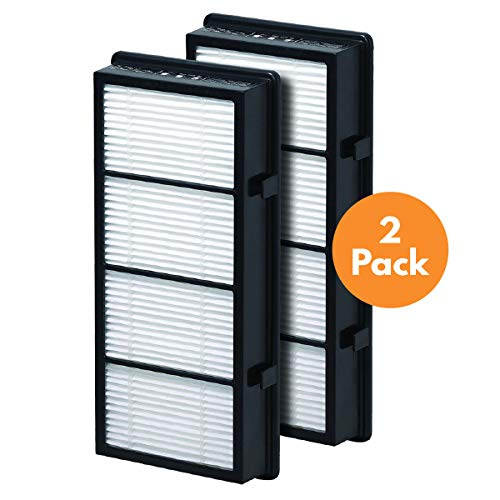 - True HEPA Replacement Filter Compatible with Holmes AER1 HAPF300/HAPF30 (D Filter), 2 Pack