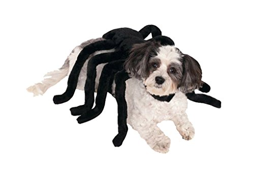 Spider Harness Dog Costumes (Spider Harness Pet Dog Cat Costume - Medium)