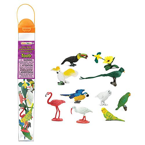 Safari Ltd Exotic Birds TOOB - 11 Different Hand Painted, BPA, Pthalate, and Lead-Free Toy Figurine Models - For Ages 3 And Up