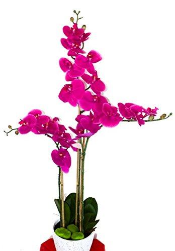 Amazon Com Seller Profile Mina Flower Design