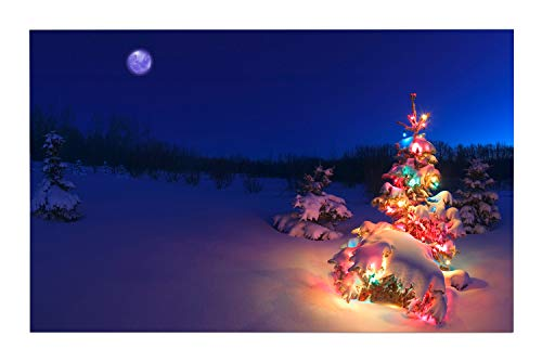 JANNINSE Navy Blue Sky Moon Snow Pink Red Blue Christmas Tree Vertical Stripe Large Door Mat, Front Door Mat Shoe Scraper Artificial Turf Grass Welcome Indoor Outdoor Carpet -