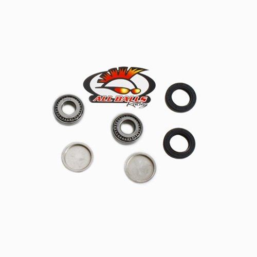 (01-08 HONDA TRX250EX: All Balls Swingarm Bearing Kit )
