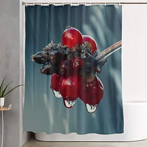 Mikonsu Lihna Shower Curtain with Hooks Holly Drip Rain Leaf Wet Raindrop Nature Art Bathroom Decor Bath Curtain-60x70 in]()