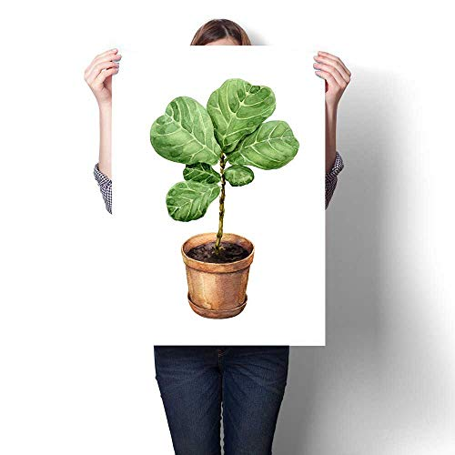 (Anniutwo Landscape paintingFicus Lyre in Clay Flowerpot Oil Painting decoration16 x32)