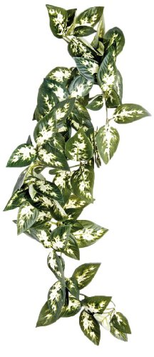 Borneo Hanging Vine 40cm by Happy Pet Products Limited