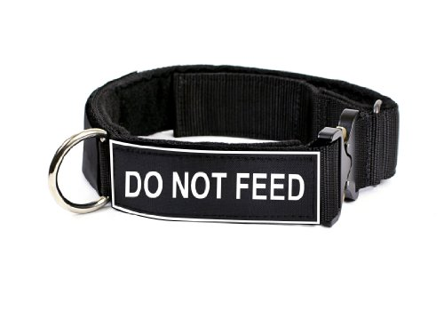 Dean & Tyler 26 to 37-Inch Strong Nylon Cobra Patch Collar With Felt Padding, Do Not Feed Patches, Large, Black