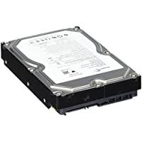 Seagate 250GB 7200RPM Sata-enterprise ST3250310NS