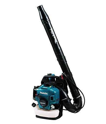 Buy the best backpack blower