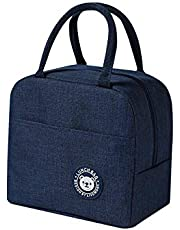 Lunch Bag,Lunch Box with Insulated Material for Women, Man, Office, School, Collage, Beach, Picnic, Fishing, Hiking Travel, Cooler Tote Bag (Blue)
